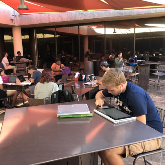 Cool Spots on Campus: John Peace Library 4th Floor